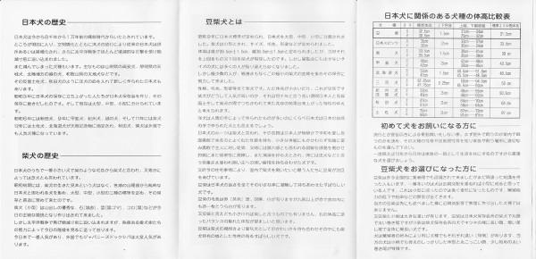 豆柴犬小冊子2